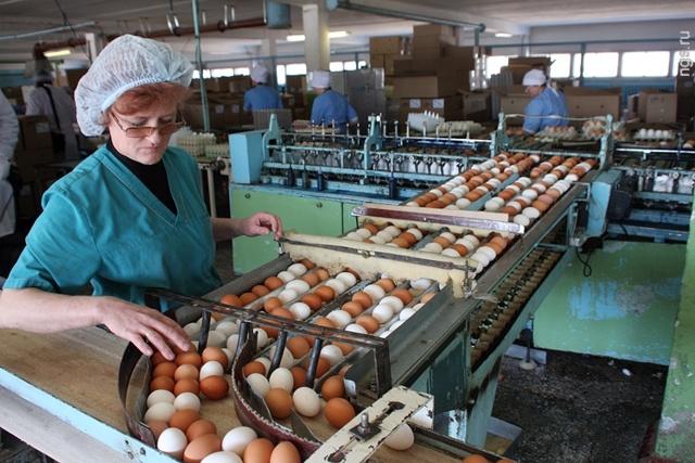 Продолжительность рабочей недели для женщин в сельской местности, для работающих в районах Крайнего Севера, при наличии детей