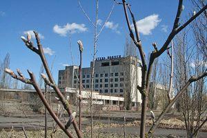 Дополнительный отпуск чернобыльцам: кому положен, продолжительность отдыха, кто оплачивает отпускные, как оформить заявление, приказ - образцы документов
