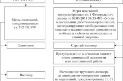 Виды дисциплинарных взысканий и ответственности работников по ТК РФ: какие меры наказания и воздействия устанавливаются за нарушение трудовой дисциплины